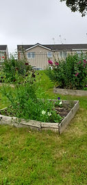 reuse pallet wood for raised bed.jpg