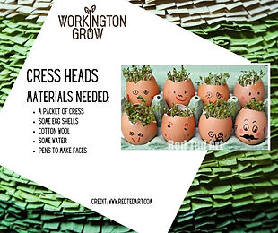 WGROW Craft Materials - Cress Heads.jpg