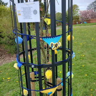 Inner Wheel Tree cage yarn bomb