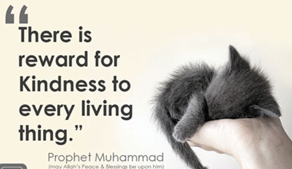 Prophet Muhammad (pbh)