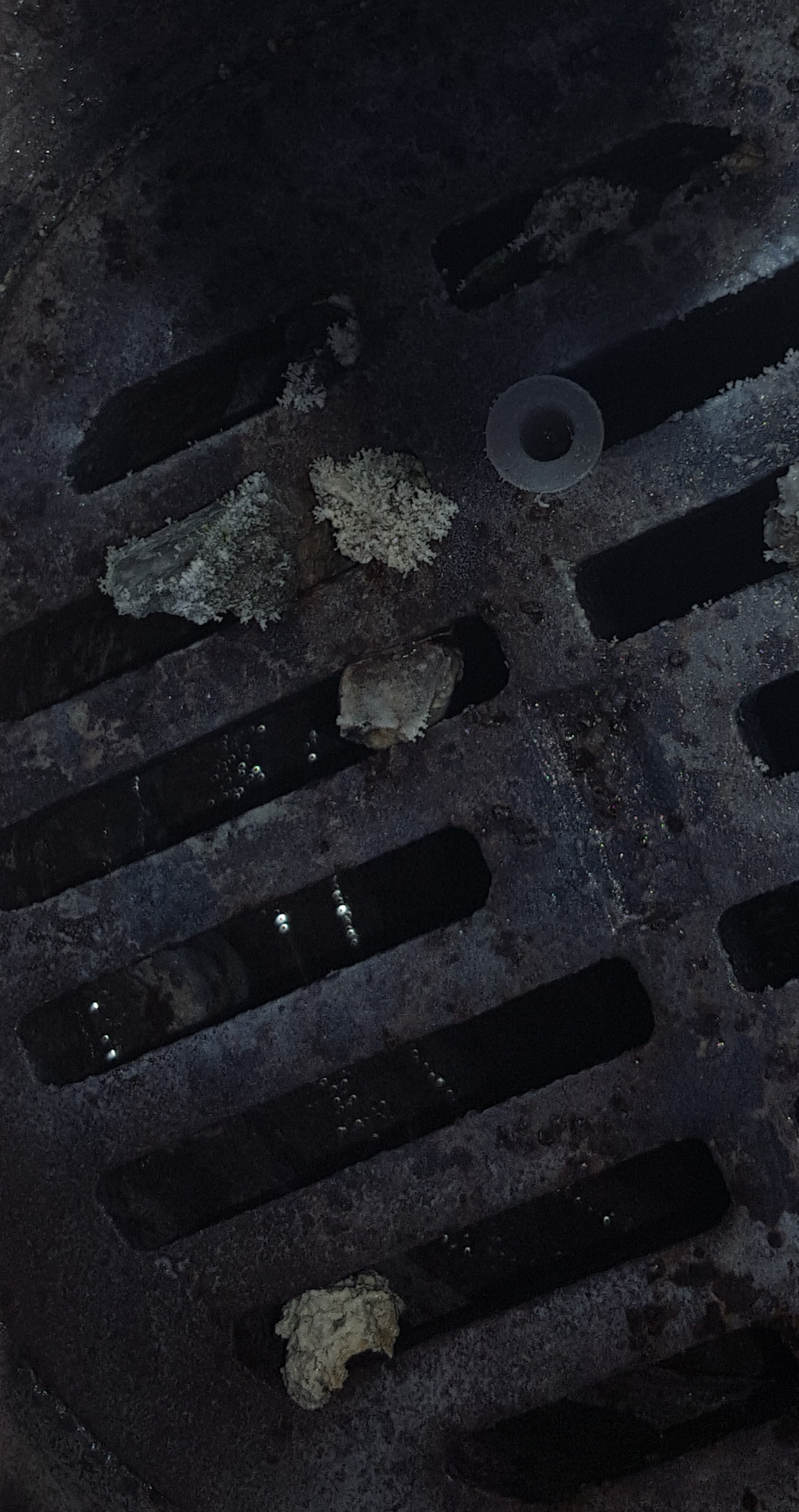 Removed particles from tower basin