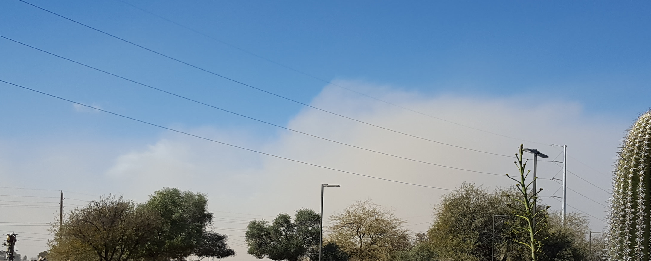 Seasonal dust storms