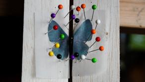 L'étalage des papillons