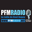 LOGO PFM.png