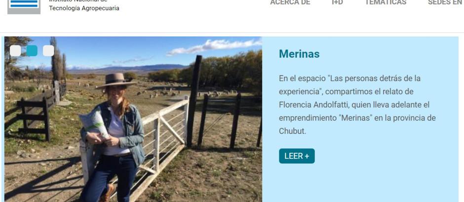Merinas, reconocidas por el INTA
