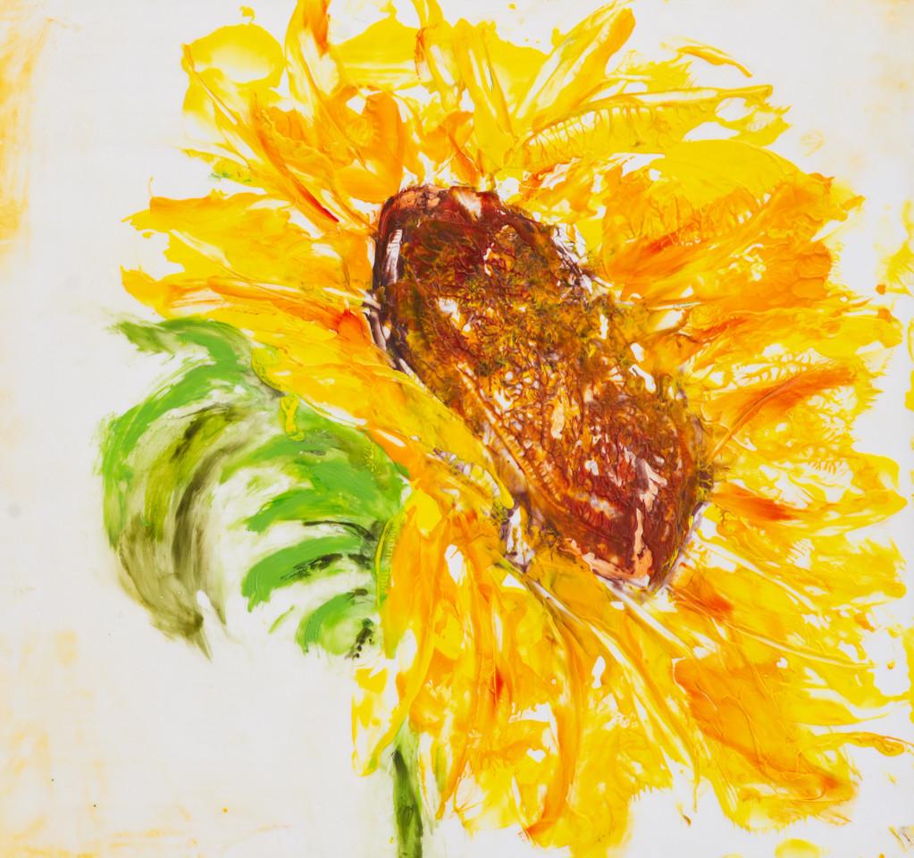 Iron Sunflower I