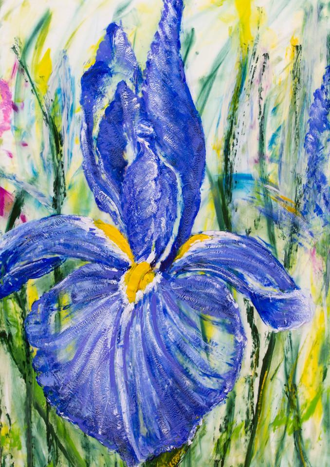 French Mauve Iris