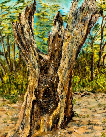 Tree Arms