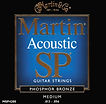 Martin Strings San Diego Acoustic
