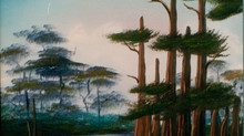 Let's paint a Florida cypress swamp