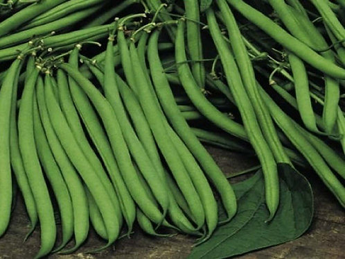 Beans-haricot [250 g]