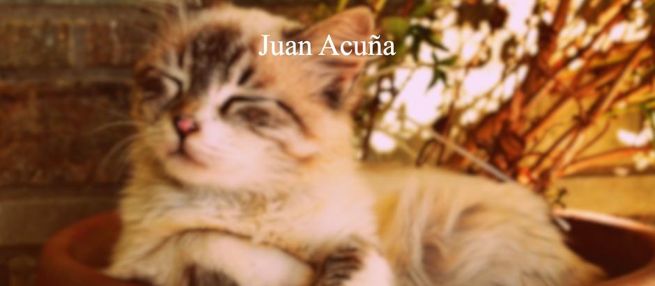 Olor a Gato; Juan Acuña