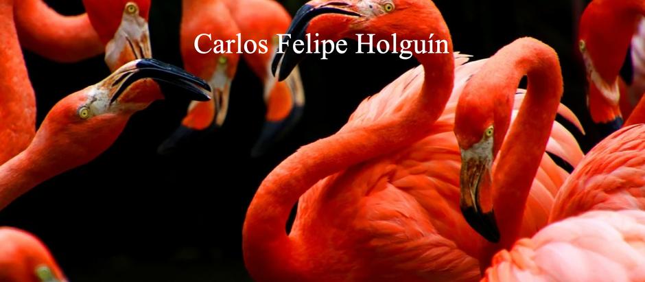 El Orofué; Carlos Felipe Holguín