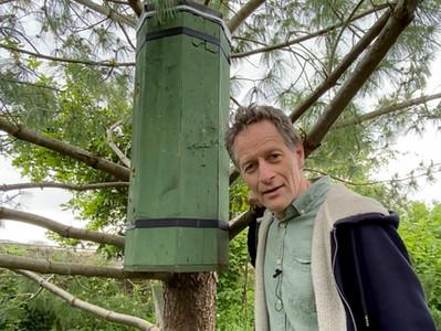 The Lockdown Pallet Hive