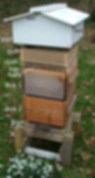Warré hive exploded view