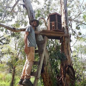 Comunity - Palestine Hive Log Hive Project