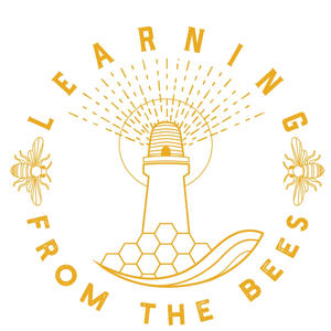 Learning - Busaries for Learning from the Bees Conference