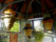 NBKT interior view of Bien house.JPG