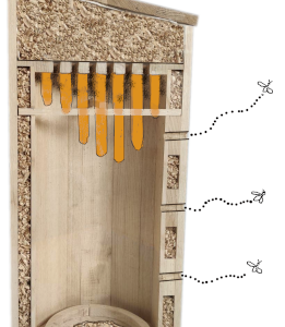 Restoration - Providing Lost Habitats to Bees