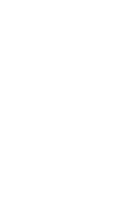 Voice icon REV.png