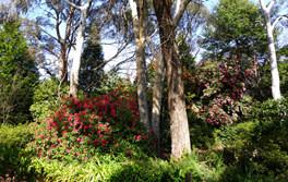 Hall Stanley Giffs Garden 2.jpg