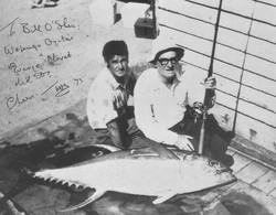 Tom Mitchell's Yellowfin