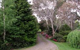 Hall-Stanley-Chestnuts-Garden-11.jpg