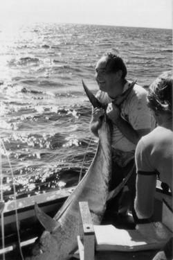 Jim Allen Yellowfin Tuna