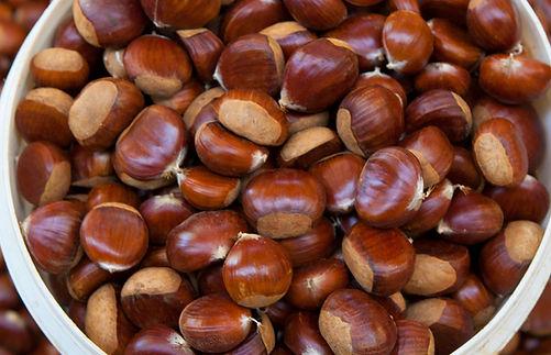 Hall Stanley Chestnut Varieties.jpg
