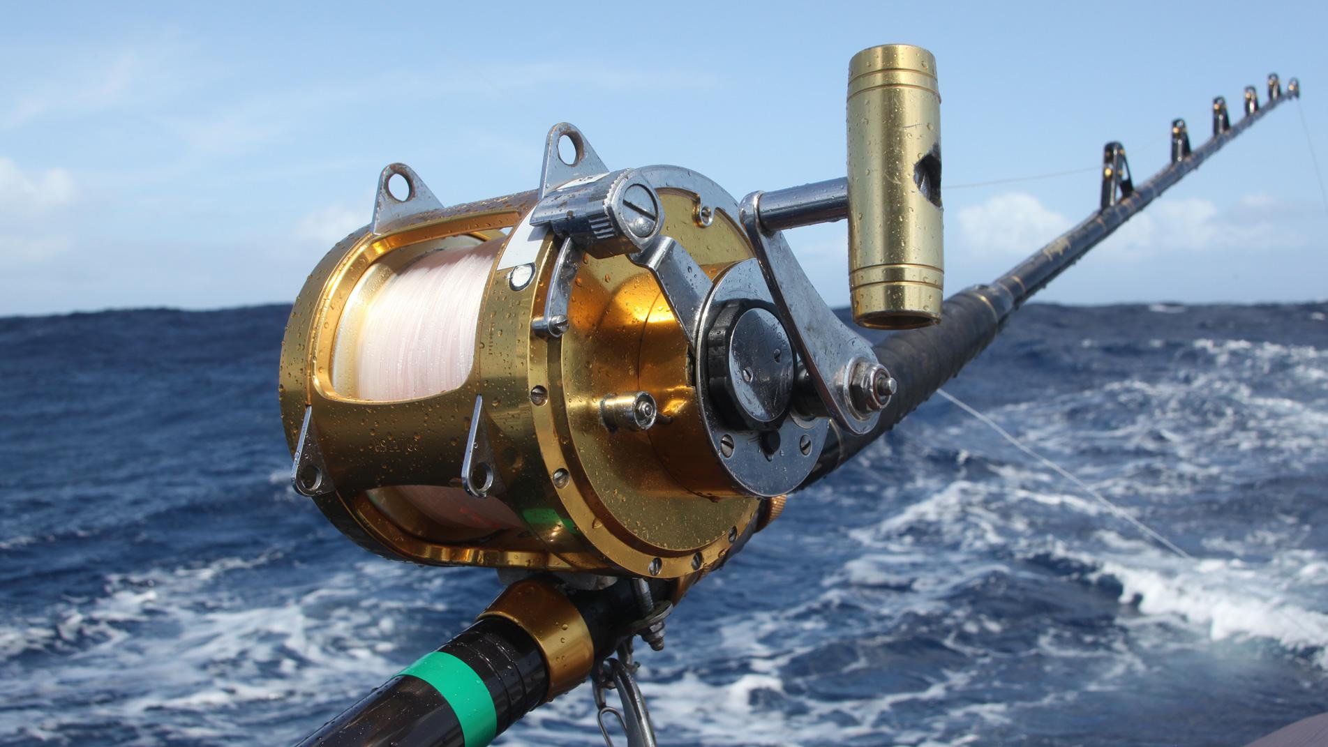 101-Swordfish5