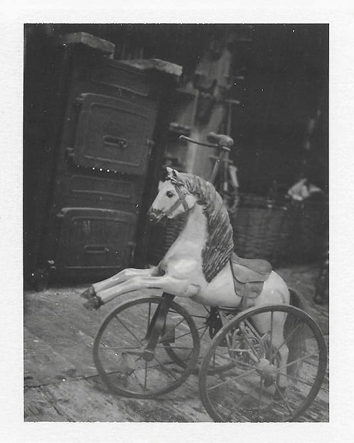 "FineArt Print - ""LAND / HORSES"""