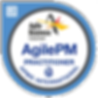 AgilePM+Practitioner-01+_281_29_edited.png