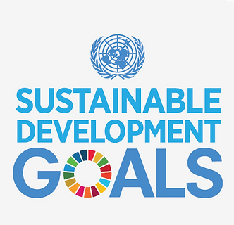 UN_SDG_Logo.png