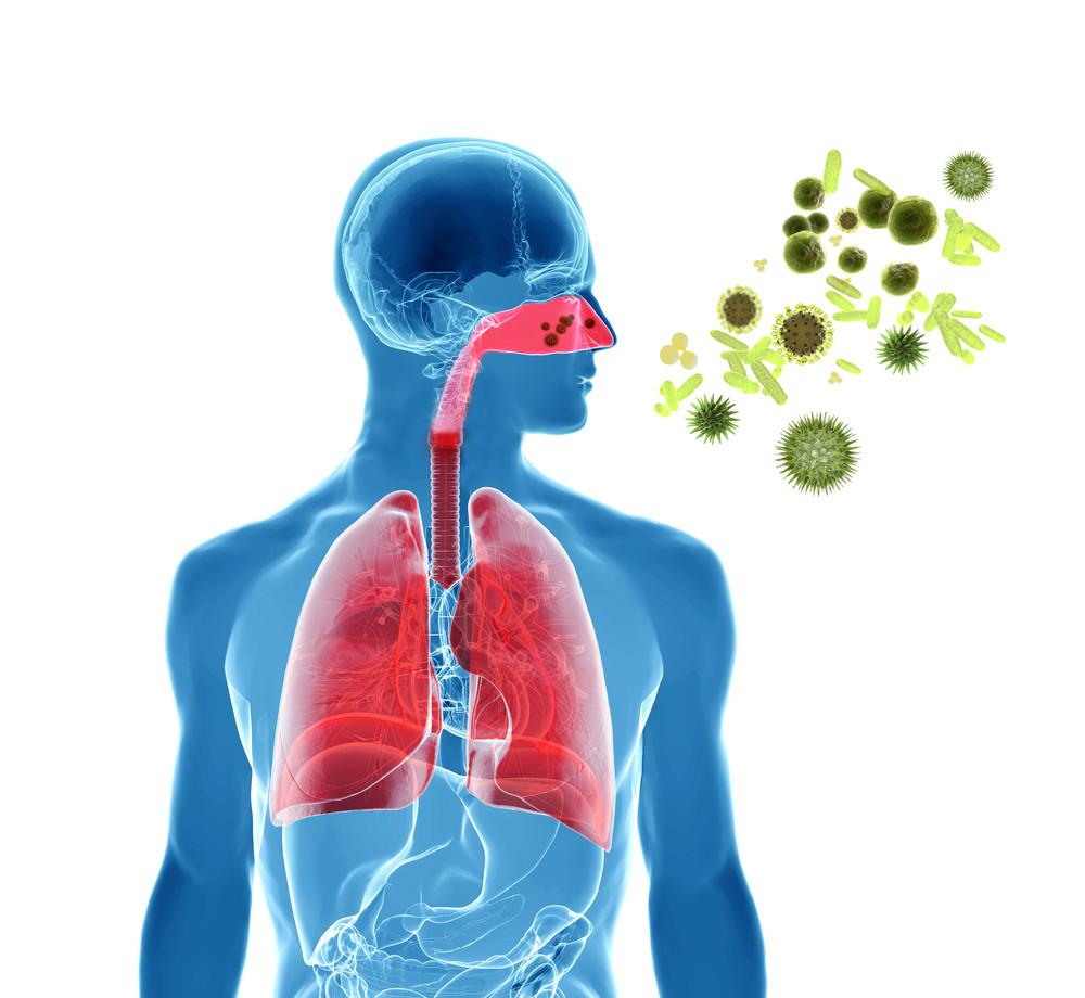 Natural Remedies For Post Nasal Drip