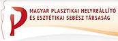 logo_maďarská společnost.jpg