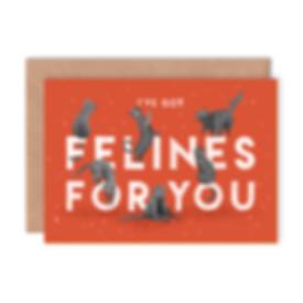 Type Felines for You.jpg