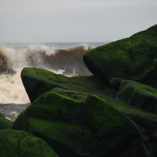 'ocean rocks'