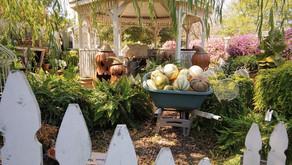 Pumpkins, Mums and a Secret Garden at Patti's Flowers