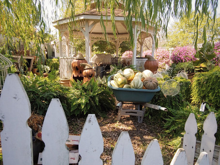Pumpkins, Mums and a Secret Garden at Patti's Flowers