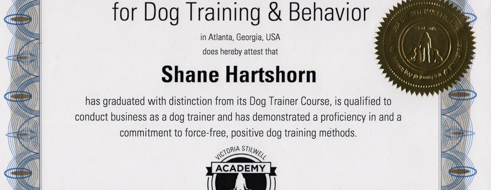 Grad Certificate - Shane Hatshorn.jpeg