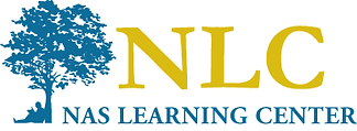 Copy of Nas Logo Color.png