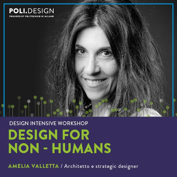 2020-21 Design for Non Humans