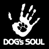 2018 Dog's Soul