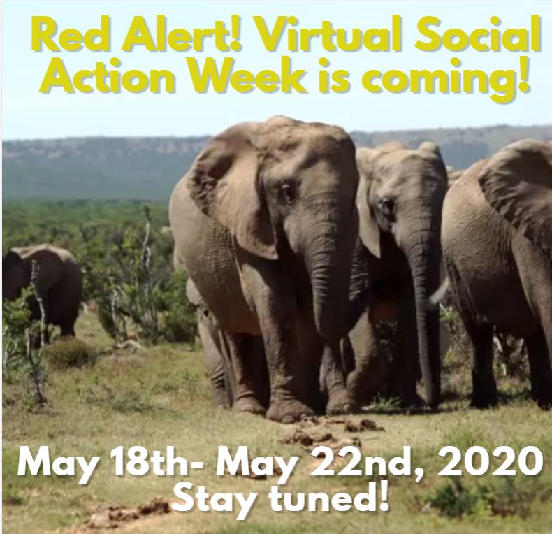 RED ALERT! VIRTUAL SOCIAL ACTION WEEK IS COMING