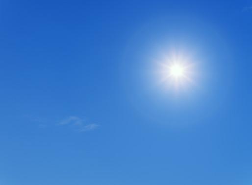 Les fortes chaleurs ... un danger invisible pour vos animaux 🐾