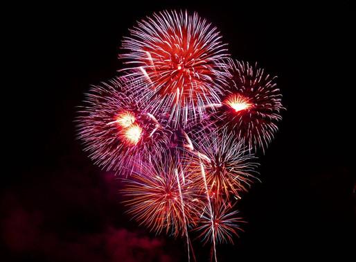 Les feux d'artifice 🎊... un bonheur pour les Humains mais un calvaire pour vos animaux !
