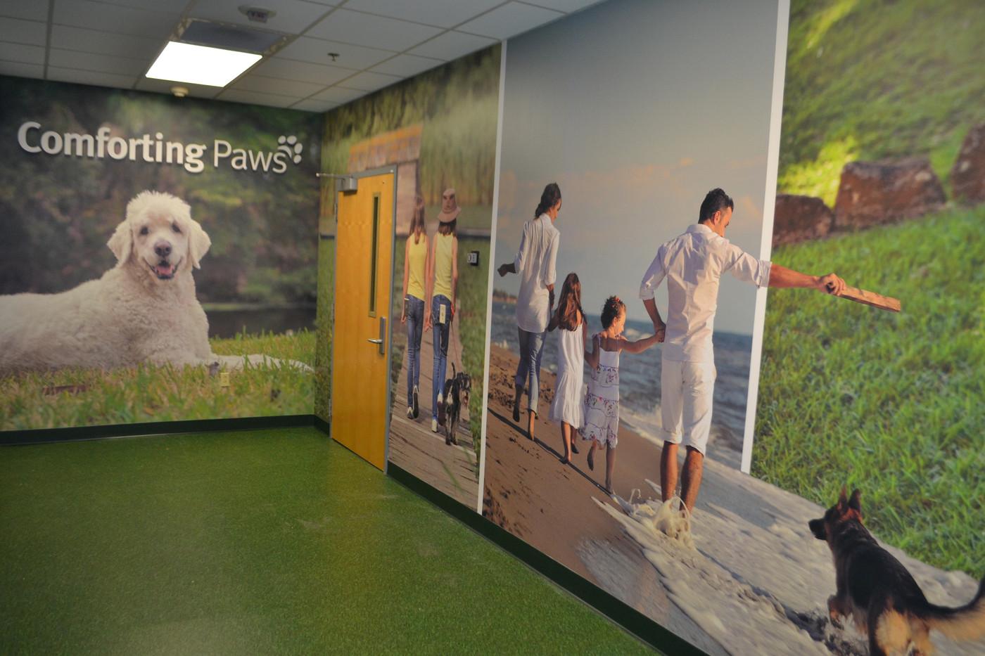 Comforting paws mural2.JPG