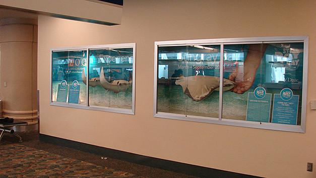 Jacksonville Zoo stingray exhibit