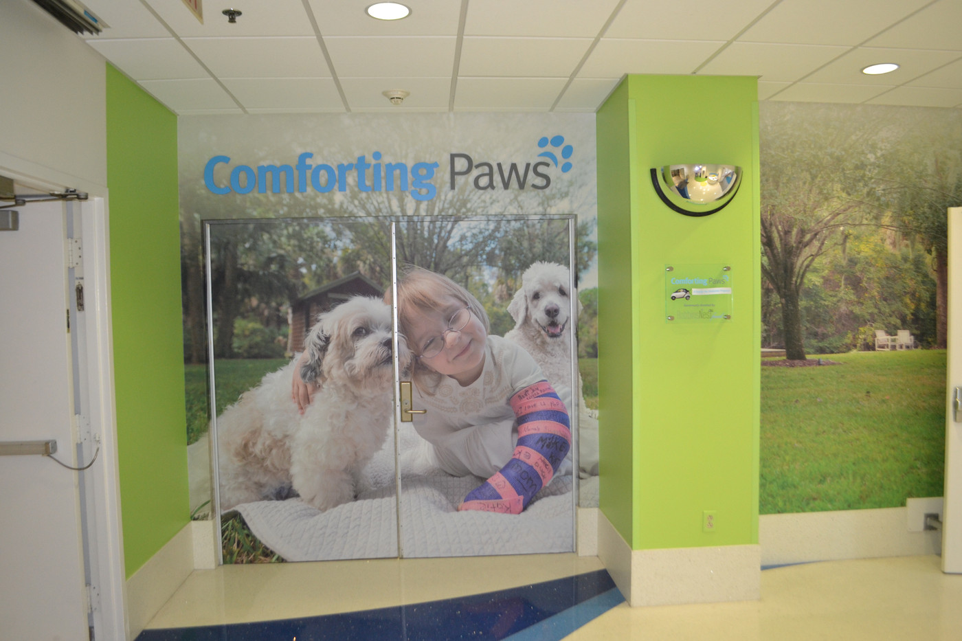 Comforting Paws wall mural