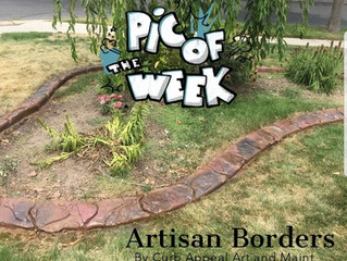 Artisan Borders be Killin it!!